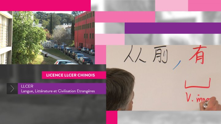 UFR2 Licence LLCER - Chinois